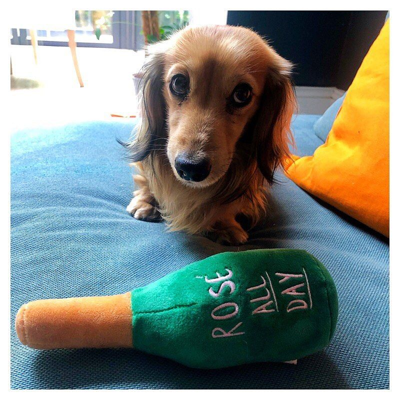 Dachshund Dog Toy Pet Toys Sausage Dog Toys Dachshund Puppy Toys
