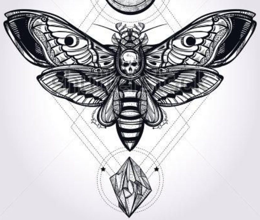 Pin By Nadav Keidar On Tattoos Death Head Moth Tattoo Death Moth Tattoo Tattoo Designs