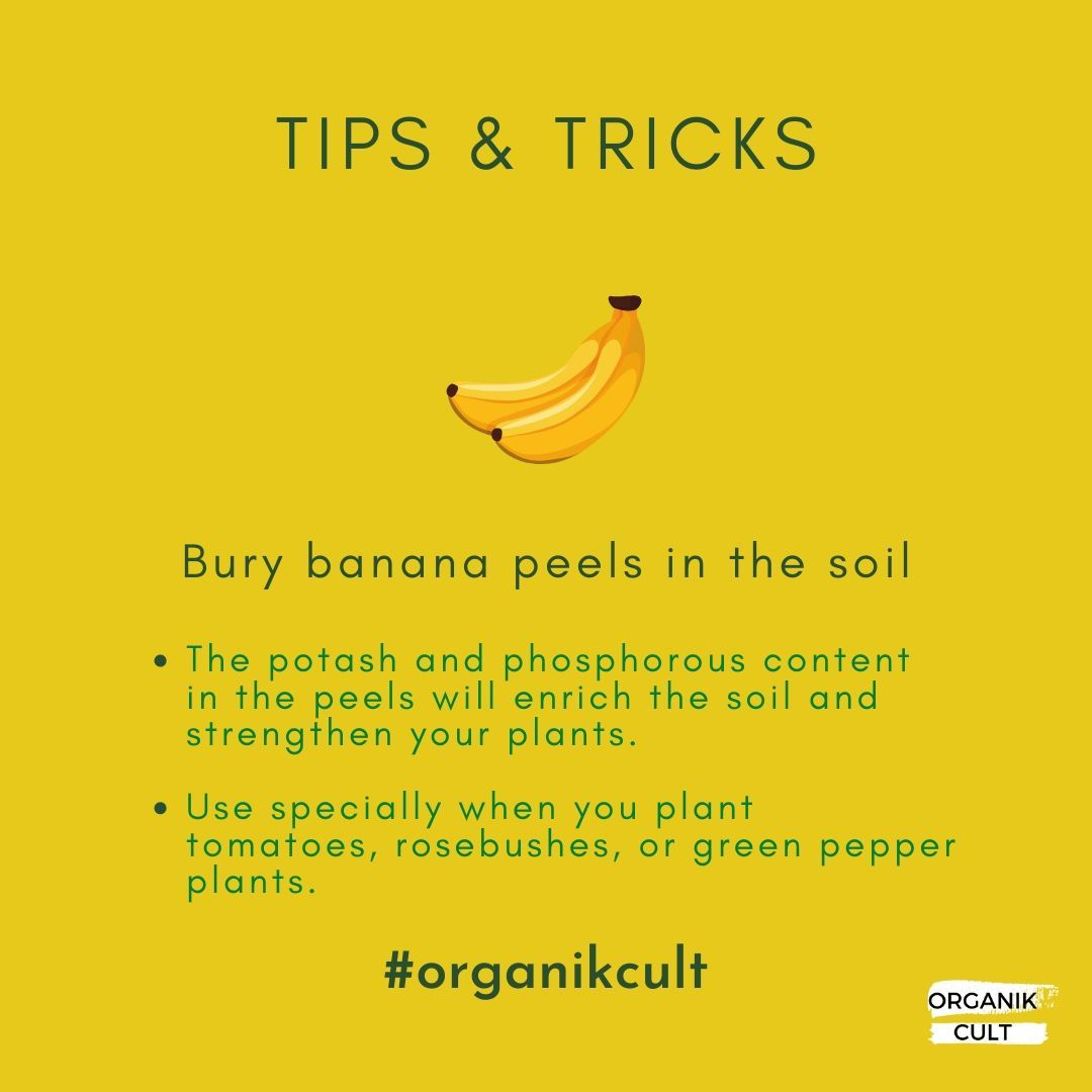 Here's one of our simple tips & tricks to make your organic garden flourish!  #organic #organicfood...
