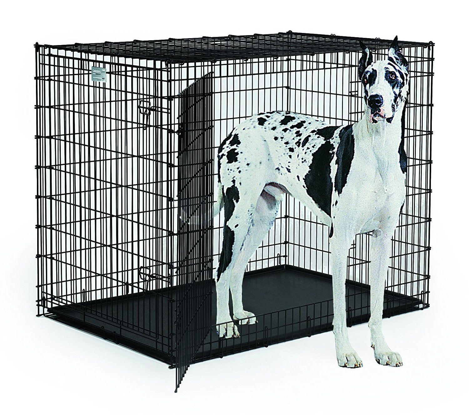 Top 10 Best Xxl Dog Crates And Xxxl Dog Crates 2020 Reviews Xxxl