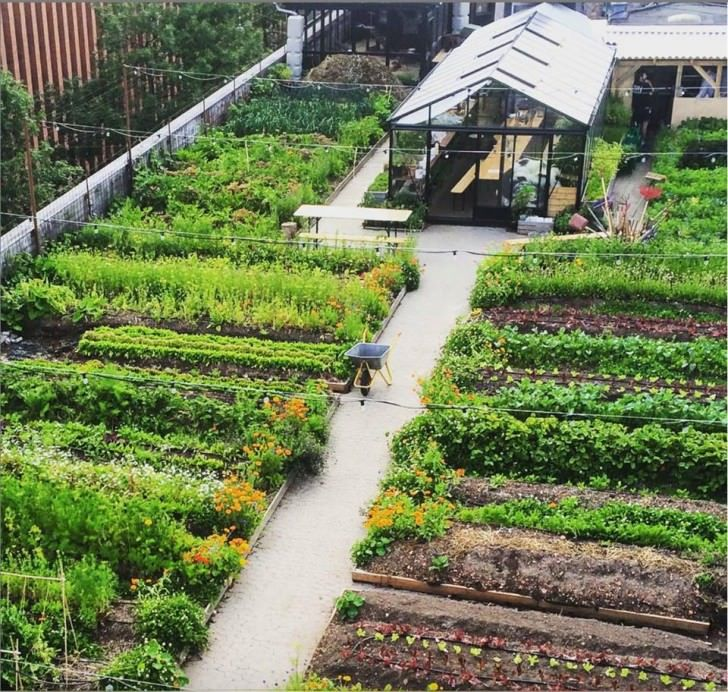 Oestergro A Urban Farm Landscape Made In Denmark In 2020 Urban Garden Rooftop Garden