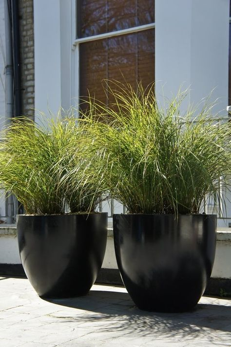 Round Black Pots Greenery Large Outdoor Planters 400 x 300
