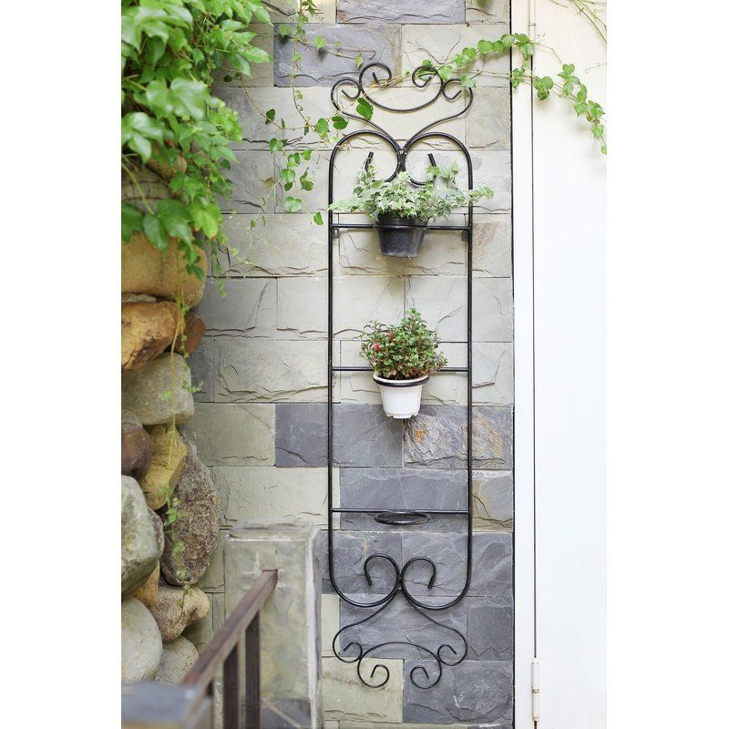 Colona 3 Pot Cast Iron Wall Planter Metal Wall Planters Wall Planter Iron Wall