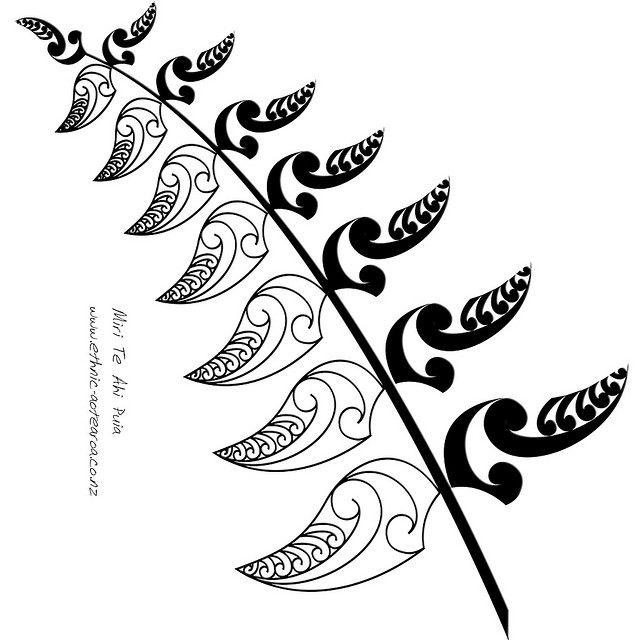 Maori Art Nz Silver Fern Tattoos Pinterest Maori Symbols