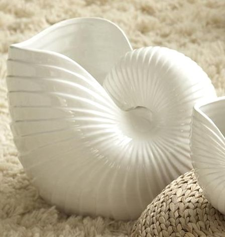 Nautilus Shell Vase Buttons Sand Beads Shells Jewels Glass