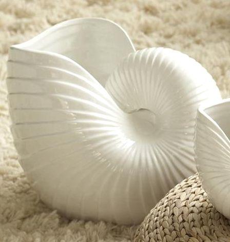 Chic Coastal Decor Accents From Seaside Interiors Vase Decorationsnautilus Shellka