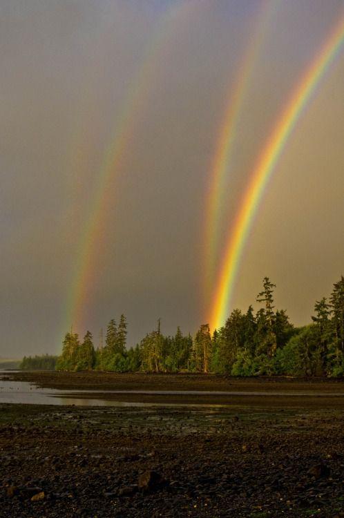 """""""Mirror Rainbow"""""""