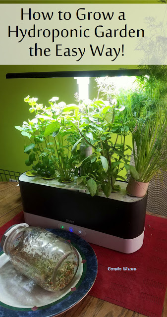 How To Plant An Indoor Hydroponic Herb Garden The Easy Way In 2020 Hydroponic Herb Garden Vegetable Garden Design Hydroponic Gardening