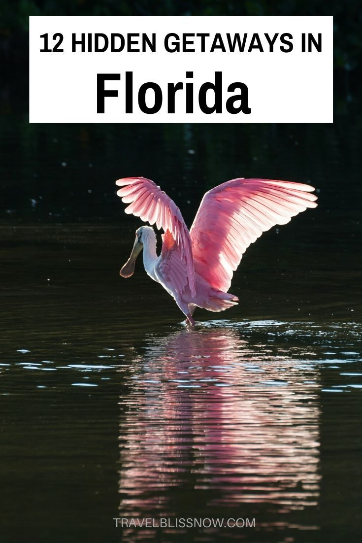 Check out these 12 Florida Hidden Getaways, including pristine beaches and nature reserves away from the crowds. Plus, what to do and where to stay in Florida. | hidden gems in Florida | secret islands in Florida | Florida winter vacation spots | best vacation spots in Florida | unique Florida vacations | Florida winter break | best places to visit in Florida | Florida vacations #Florida #USA #TravelBlissNow