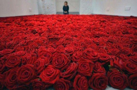 Anya Gallaccio's installation Red on Green may leave elicit a different reaction depending on when you catch the show. She started with 10,000 plucked roses and watched what happened to them