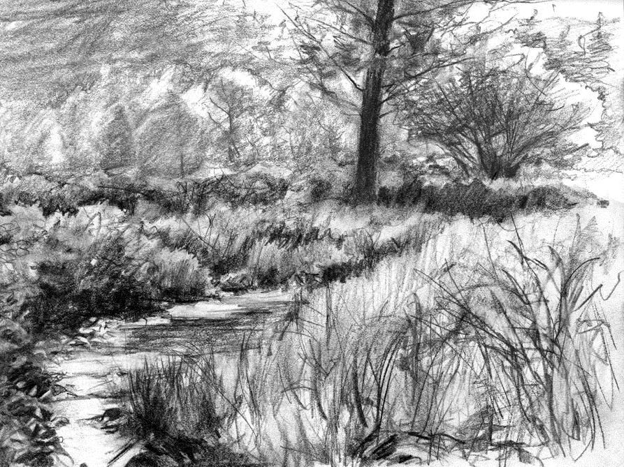 Pencil Sketches Of Nature Scenery Pencil Sketches of Nat...