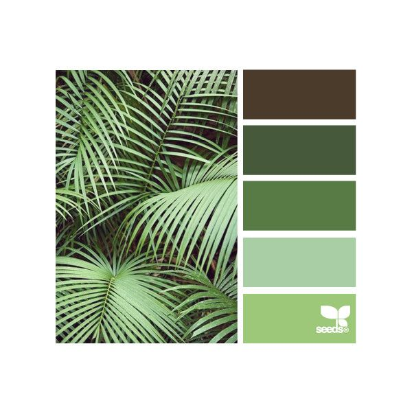 Design Seeds®: For All Who Love Color ❤ liked on Polyvore