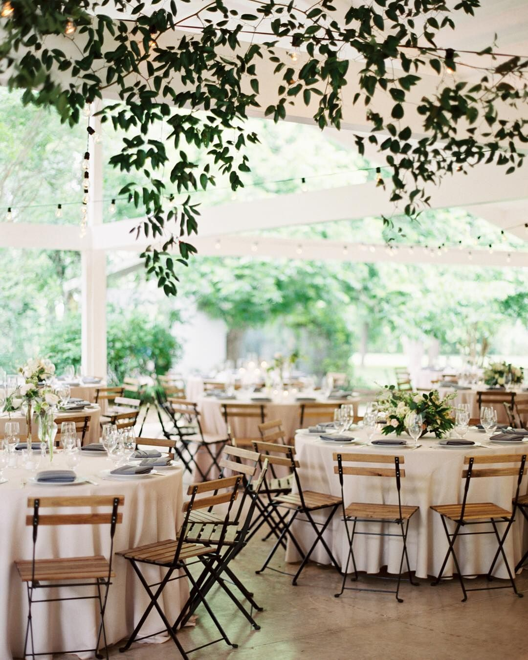 Garden wedding reception decor  beautiful hanging vines at a wedding reception  Wedding Reception