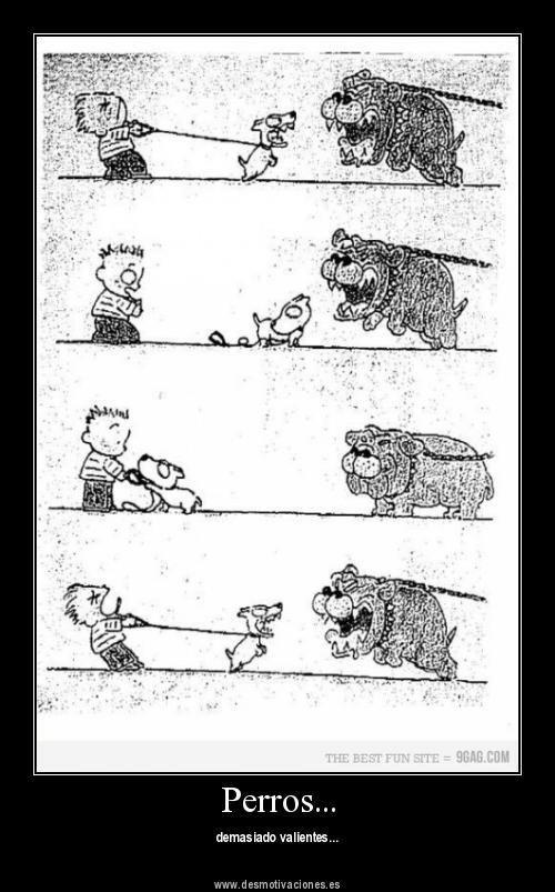 Perritos Valientes Perros Ladrando Imagenes Divertidas Humor Grafico