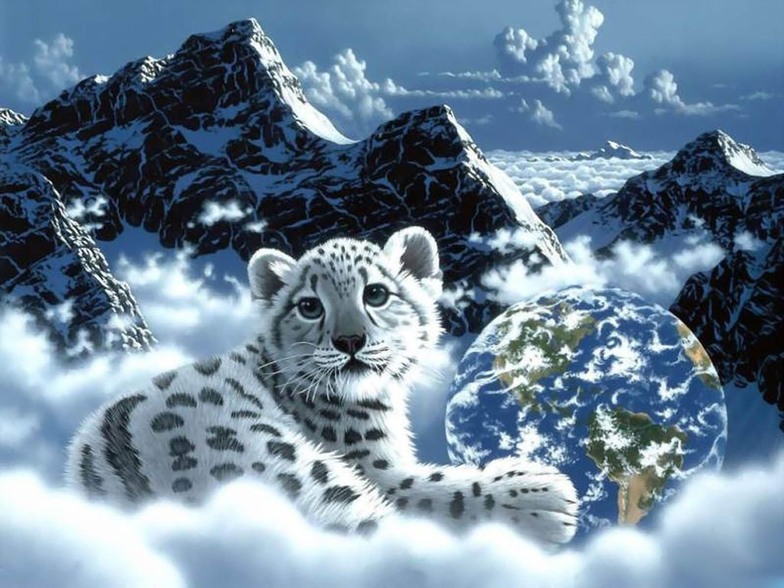 3d tiger hd background - walldu | animais | pinterest | tiger