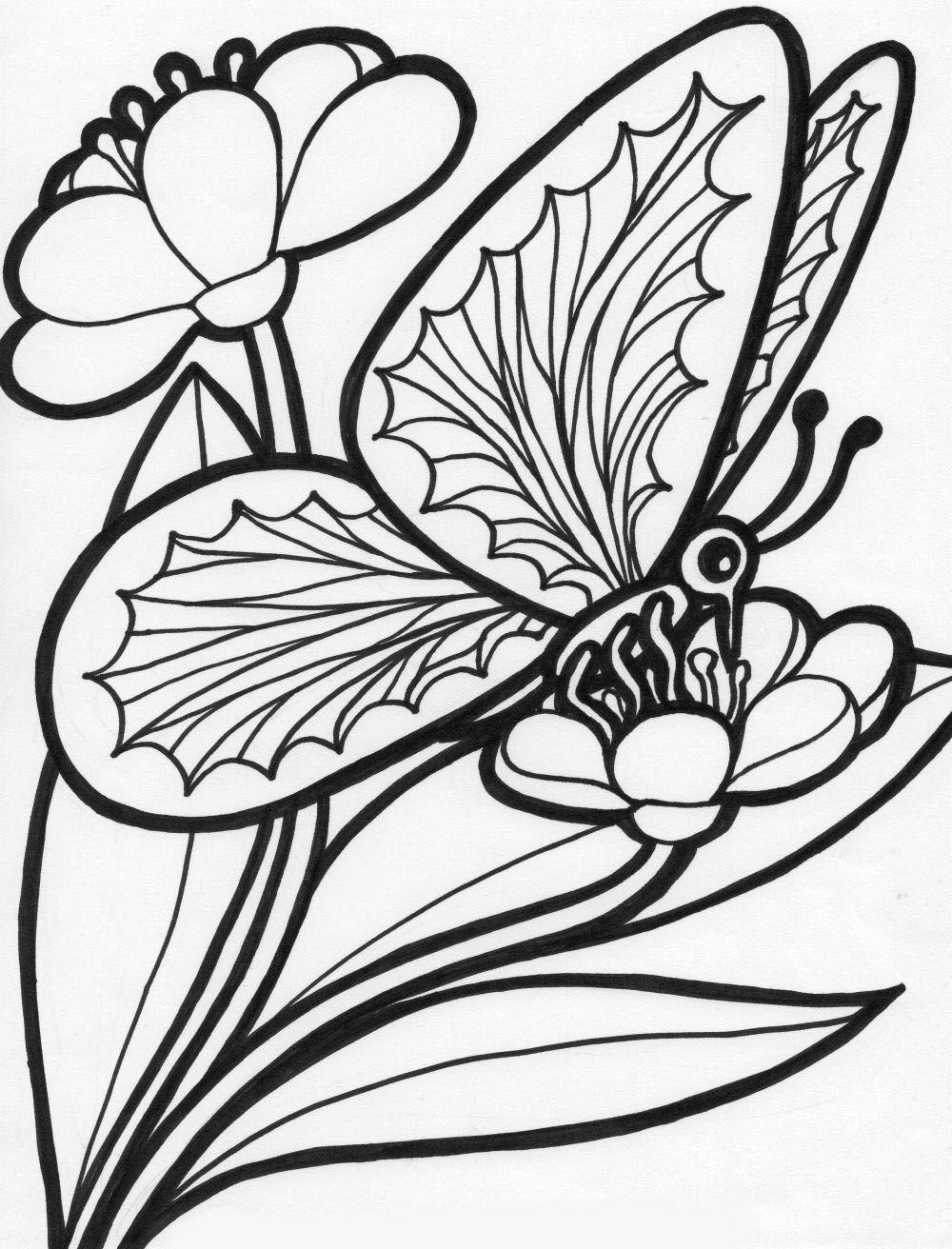 mariposas para imprimir gratis | Varios | Pinterest | Mariposas para ...