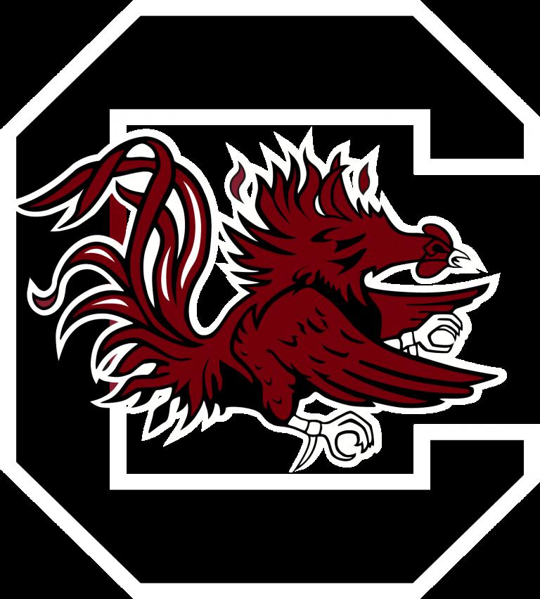 South Carolina Gamecocks Logo Png Image In 2020 South Carolina Football Carolina Football South Carolina Gamecocks