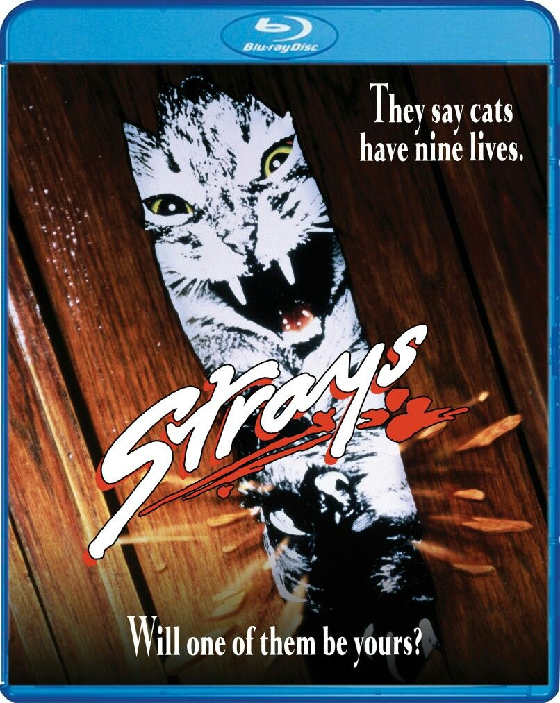 A 1991 made for television film where cats have 9 lives
