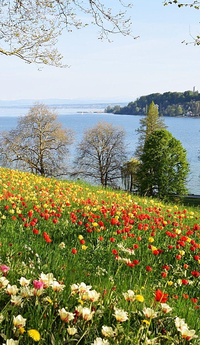 Pin von Ursulla R auf Landschaften | Beautiful landscapes ...