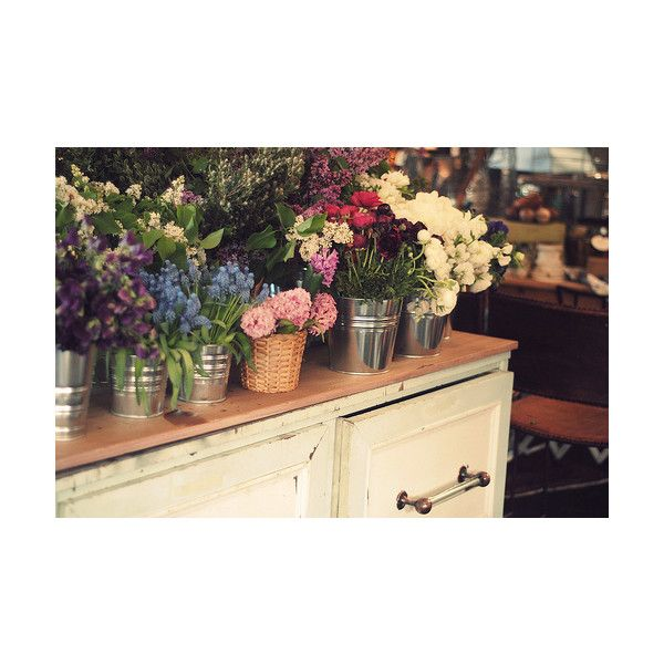 Britta Nickel found on Polyvore featuring pictures, backgrounds, flowers, photography and photos