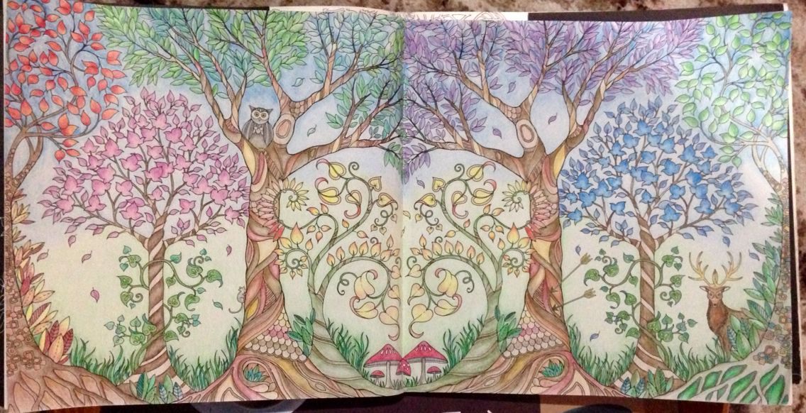 Enchanted Forest Adult Coloring Trees Johanna Basford