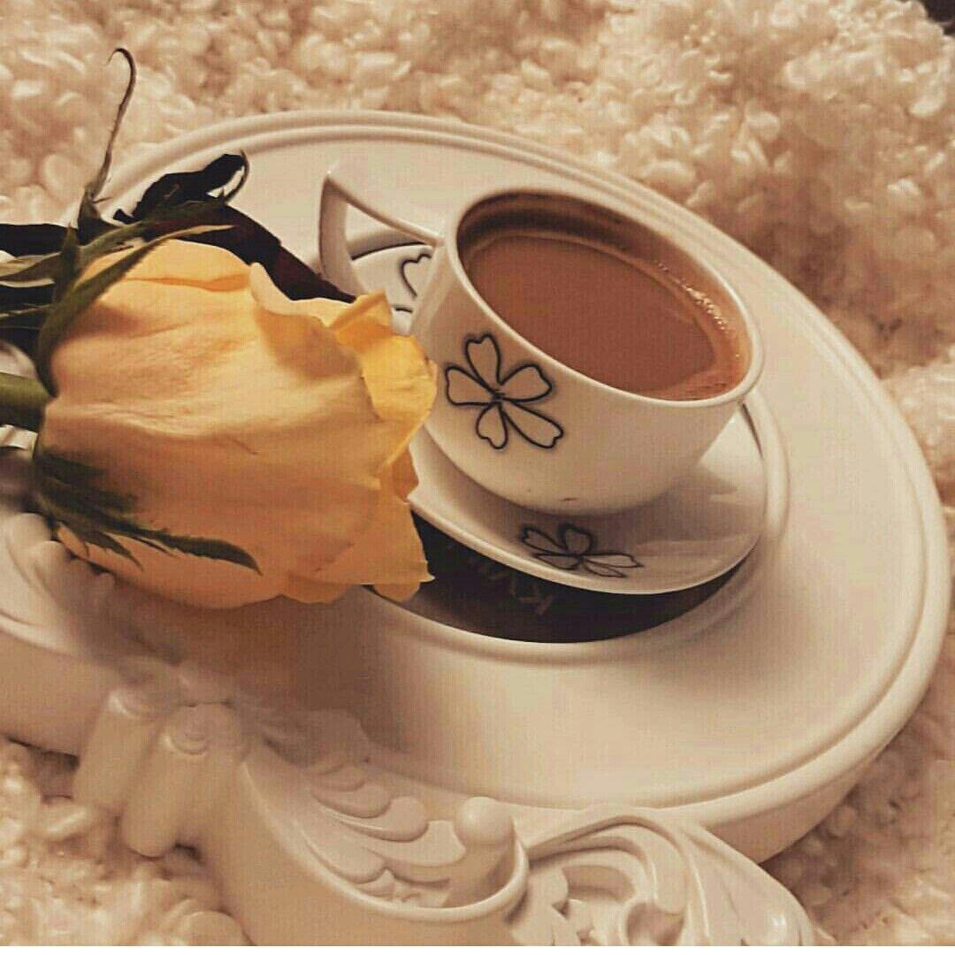 هدوء إنسانة وكثير أشياء نحبها ريحة مطر ضحكة أهل فنجان قهوة وصوت يهمس لك أنا دايم معك لو العالم يخذلك مساكم محبة