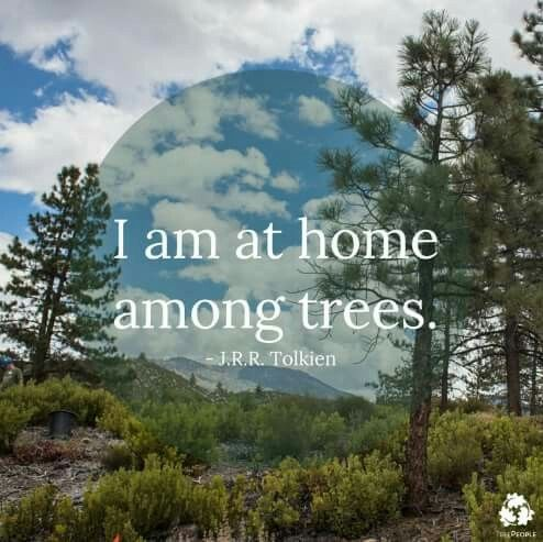 i m at home among trees tolkien quotes trees there is no