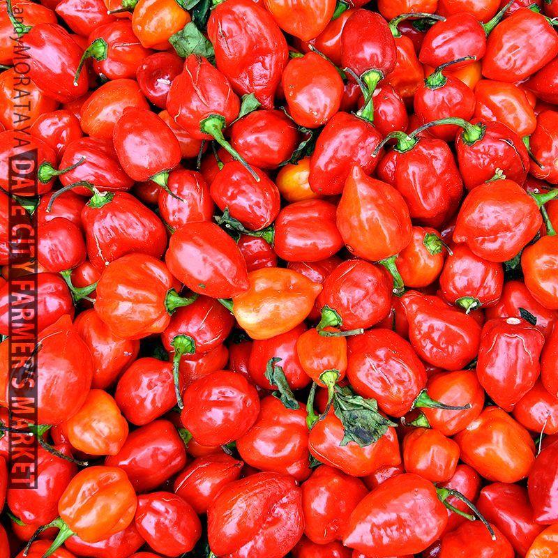 Farmer's Market, Dale City, VA  #moratayas #farmersmarket