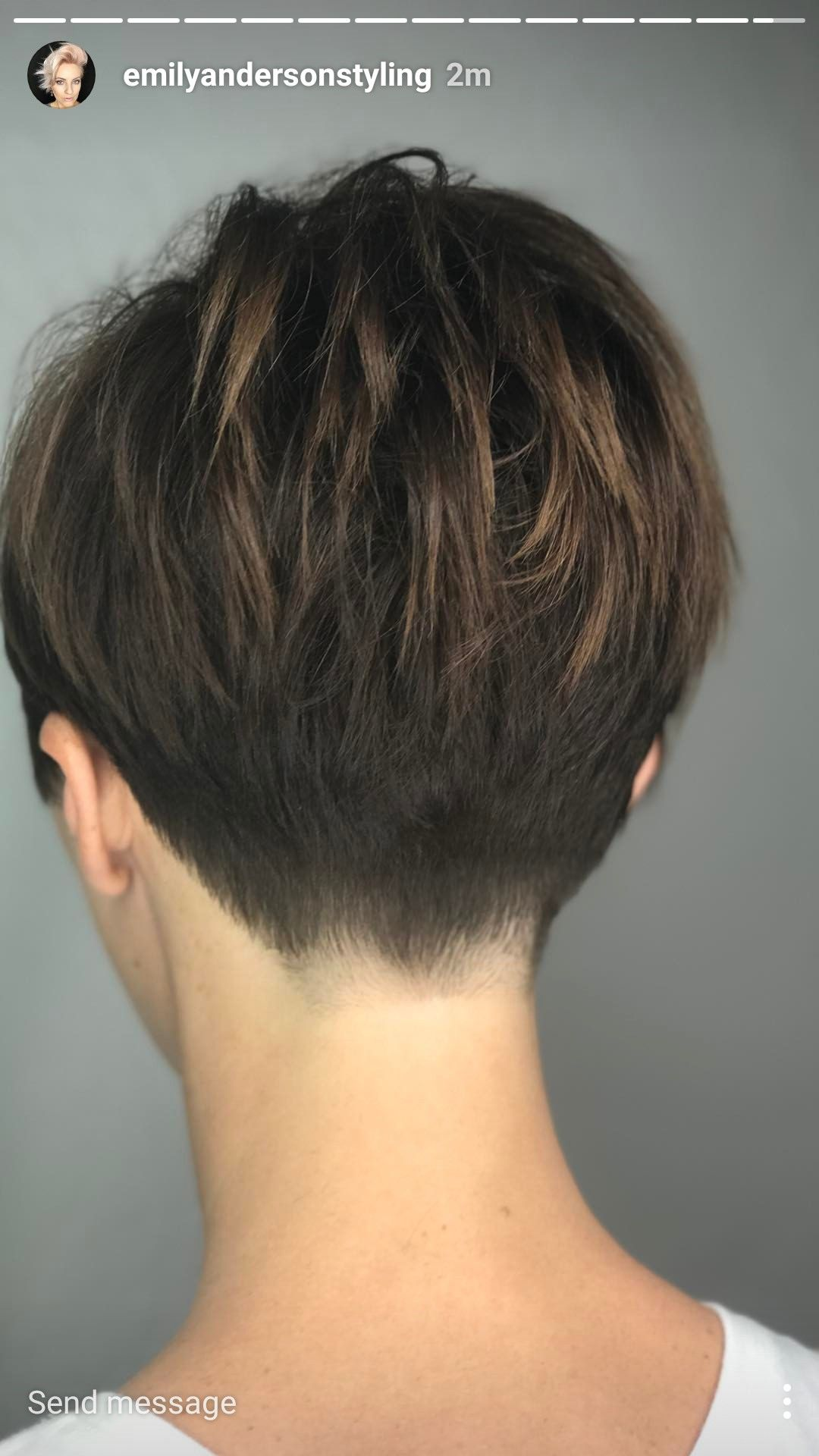 Short Hair From Behind Short Hair Back Haircut For Thick Hair Short Hair Styles