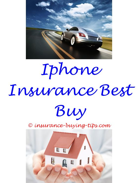 Renters Insurance Quote Instant Online Auto Insurance Quote  Car Insurance And Renters