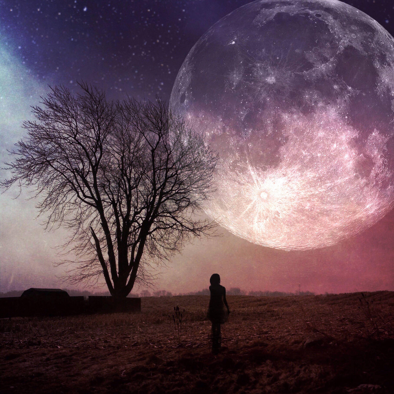 Super Moon Print Full Moon Photo Surreal Landscape Bare Etsy Photography Prints Art Fine Art Photo Prints Full Moon Photos