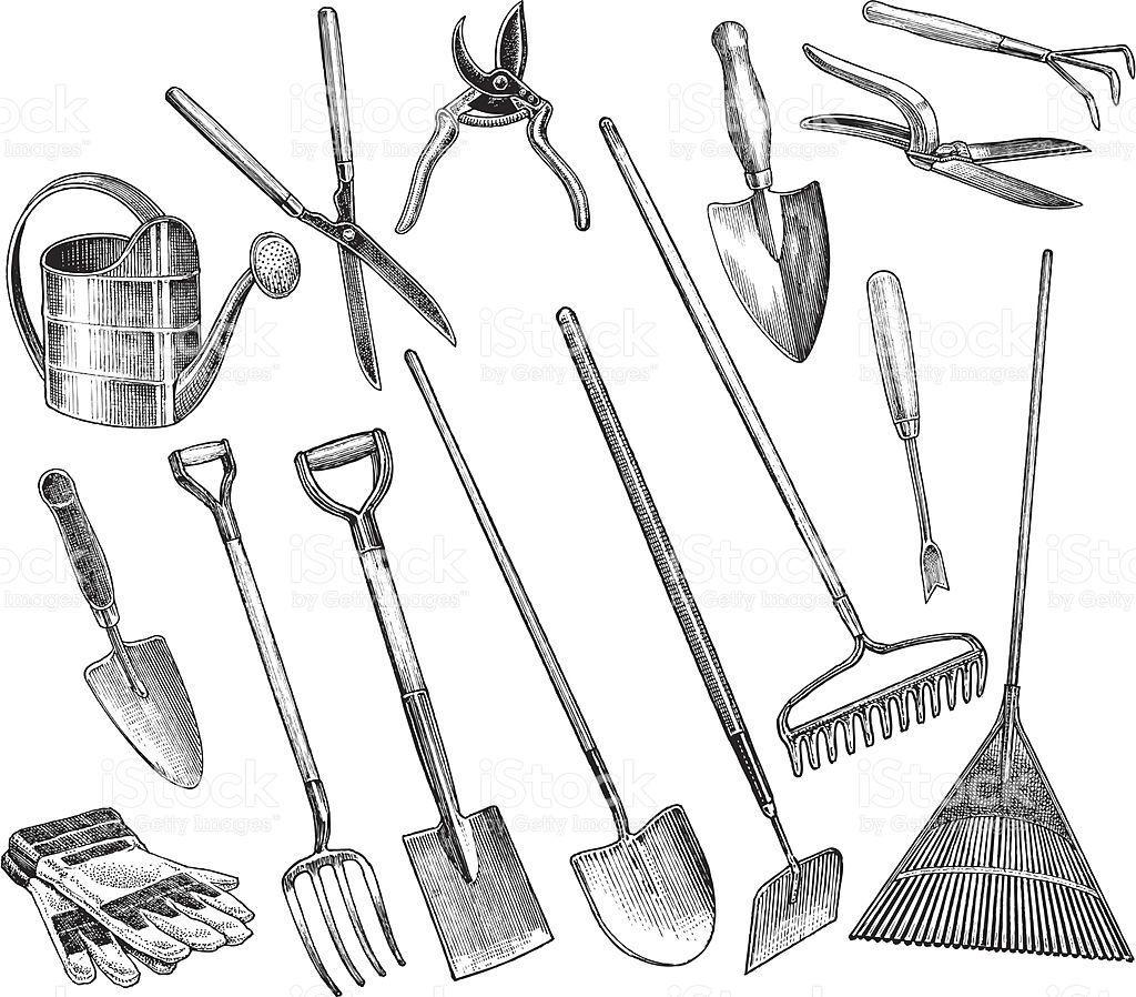 Garden tools spade hoe shovel trowel stock vector art 165959101