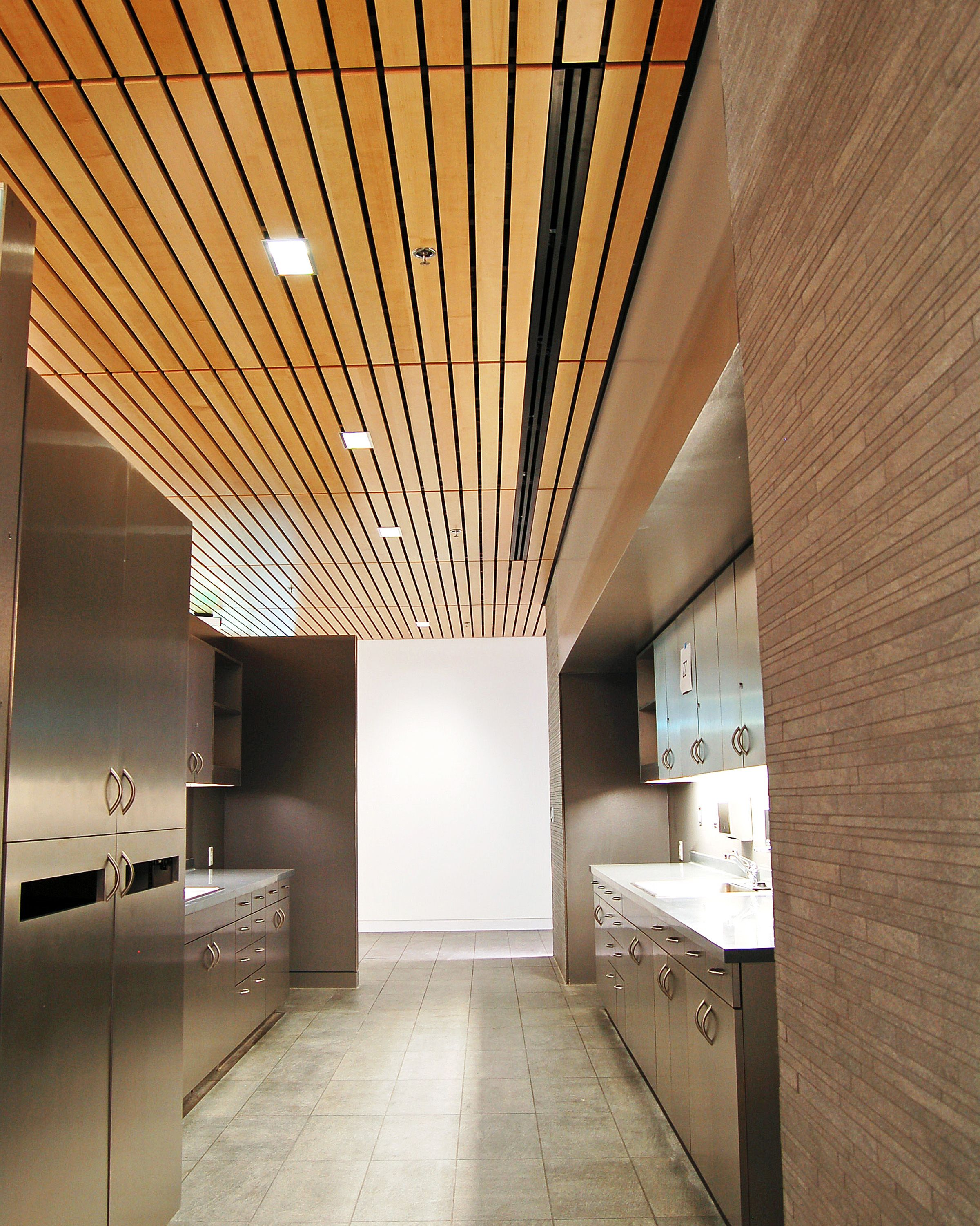2010 silver award winners ceilings interior systems armstrong ceiling tiles wood look what do you need to learn about acoustic ceiling tiles as far as the reason why theyre doublecrazyfo Choice Image