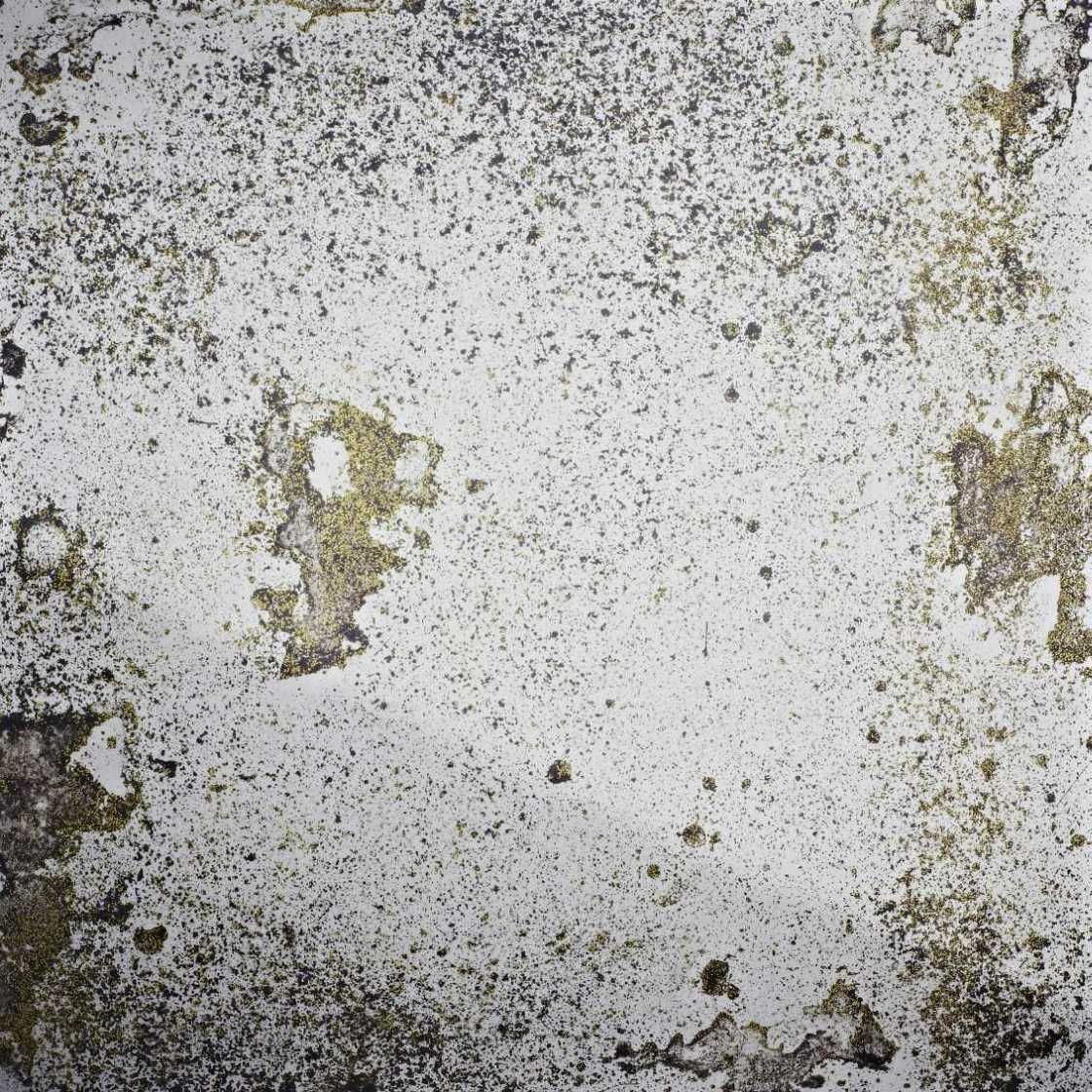 Fossil Gold | Antique mirror glass, Concrete texture ...