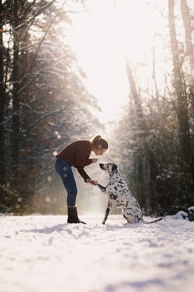 Tano & Johanna | Hundefotograf Köln - NRW #hundefotograf #hundefotoshooting #hundefotografie #hundeshooting #hundundmensch #ppsing #dogsphotography