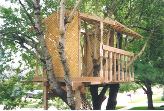 Simple Treehouse   Free Standing In Backyard Welcome To EZ Treehouse Plans