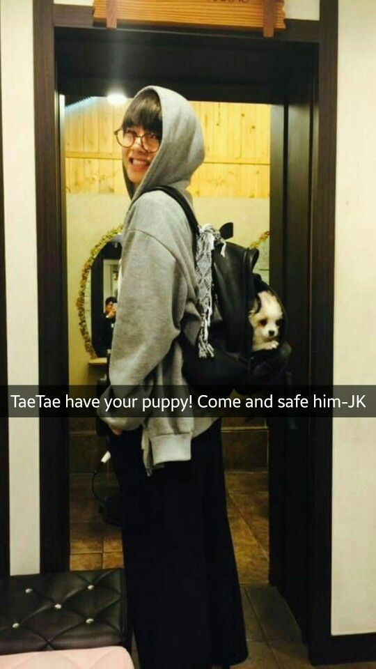 Your boyfriend Taehyung has kidnapped your cute puppy and