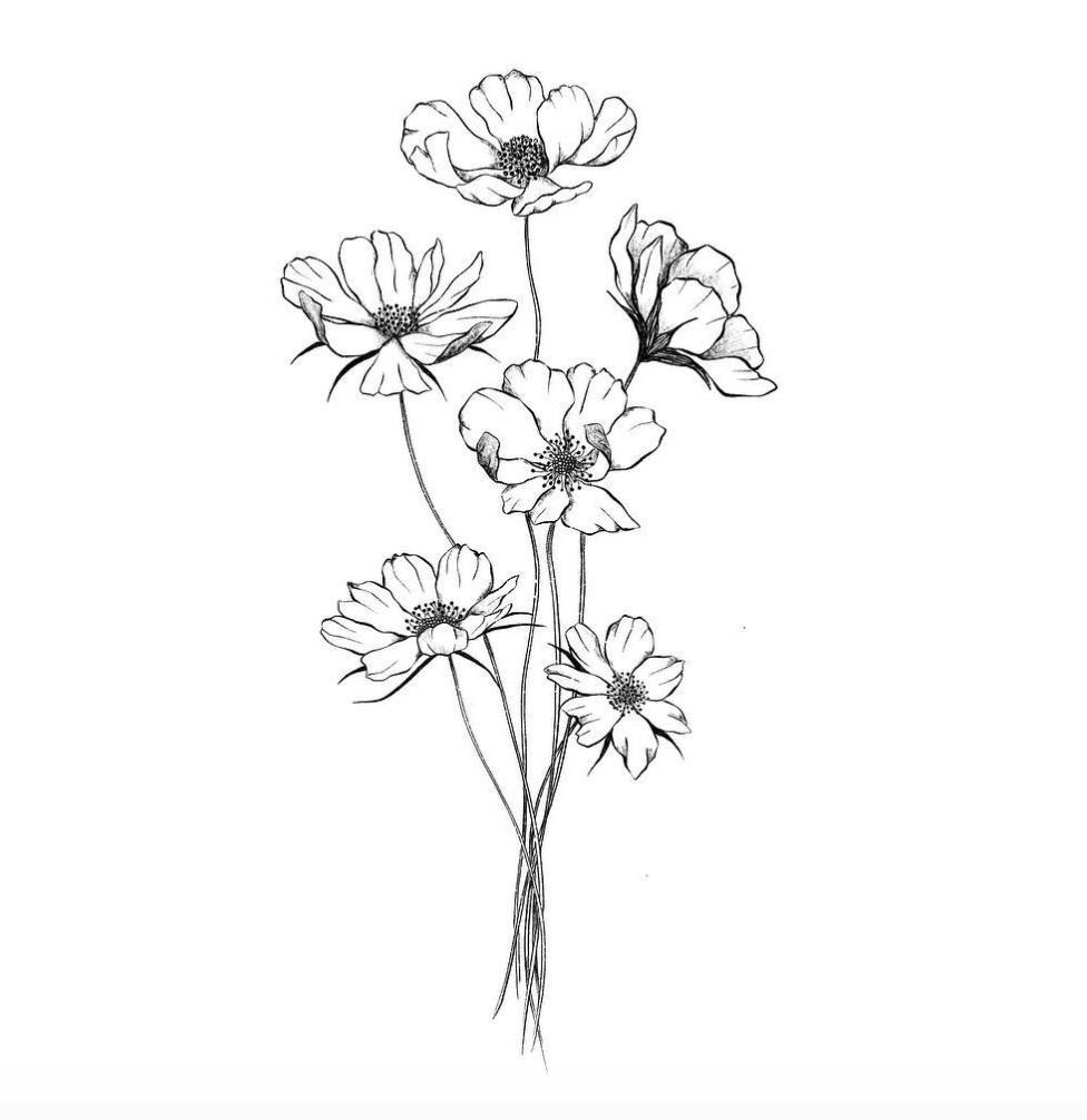 Cosmos Flower Tattoo Black And White White Flower Tattoos Black And White Flower Tattoo Cosmos Tattoo