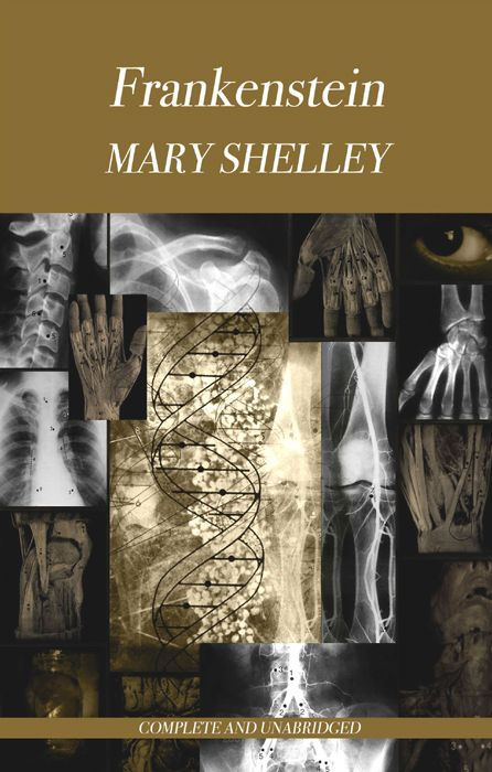 How to write an essay on Mary Shelley's novel