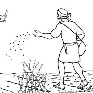 50+ Parable of the sower coloring page HD
