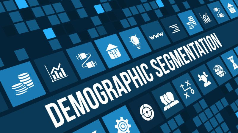 Connecting Demographics To Search Queries Risk Management