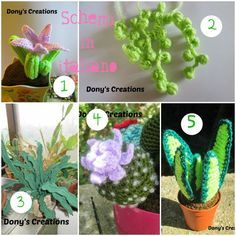 Amigurumi succulents – Melarossa creazioni | 236x236