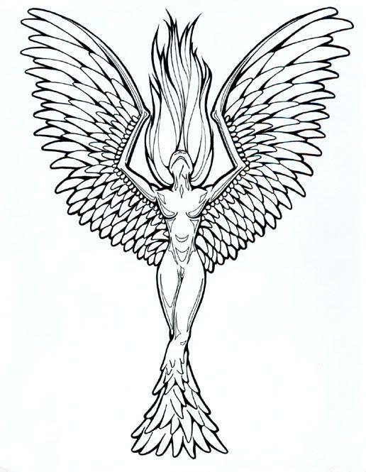 Phoenix Tattoo Graphics Code | Phoenix Tattoo Comments & Pictures ...