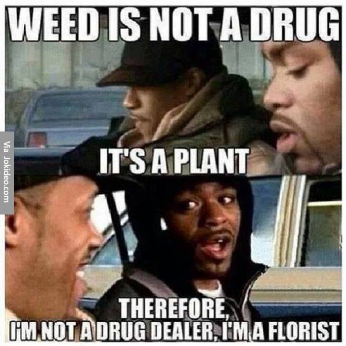 Meme Not Funny : Weed is not a drug meme http jokideo