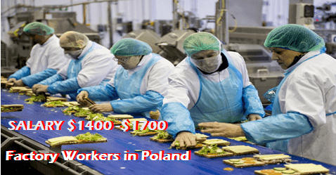 Vacancies Factory Workers In Poland Factory Worker Worker Poland