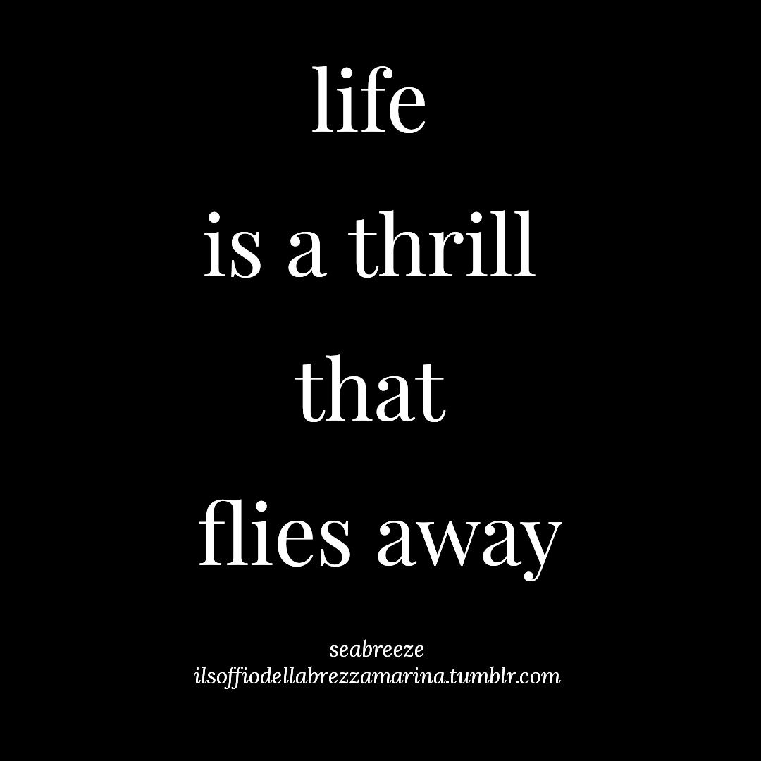 """""""La vita è un brivido che vola via"""" - Sally Vasco Rossi ☆brezzamarina☆"""