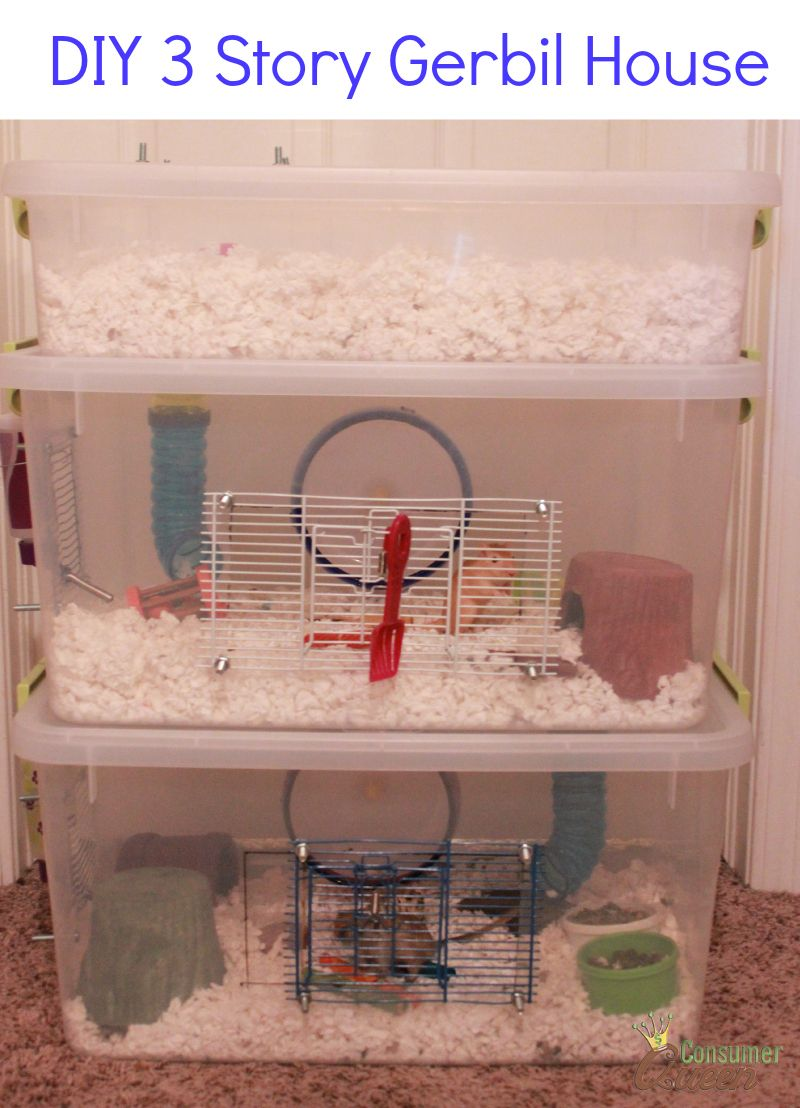 best 25 plastic hamster cage ideas on pinterest hamster