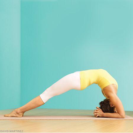 upward facing twofoot staff pose  yoga for flexibility