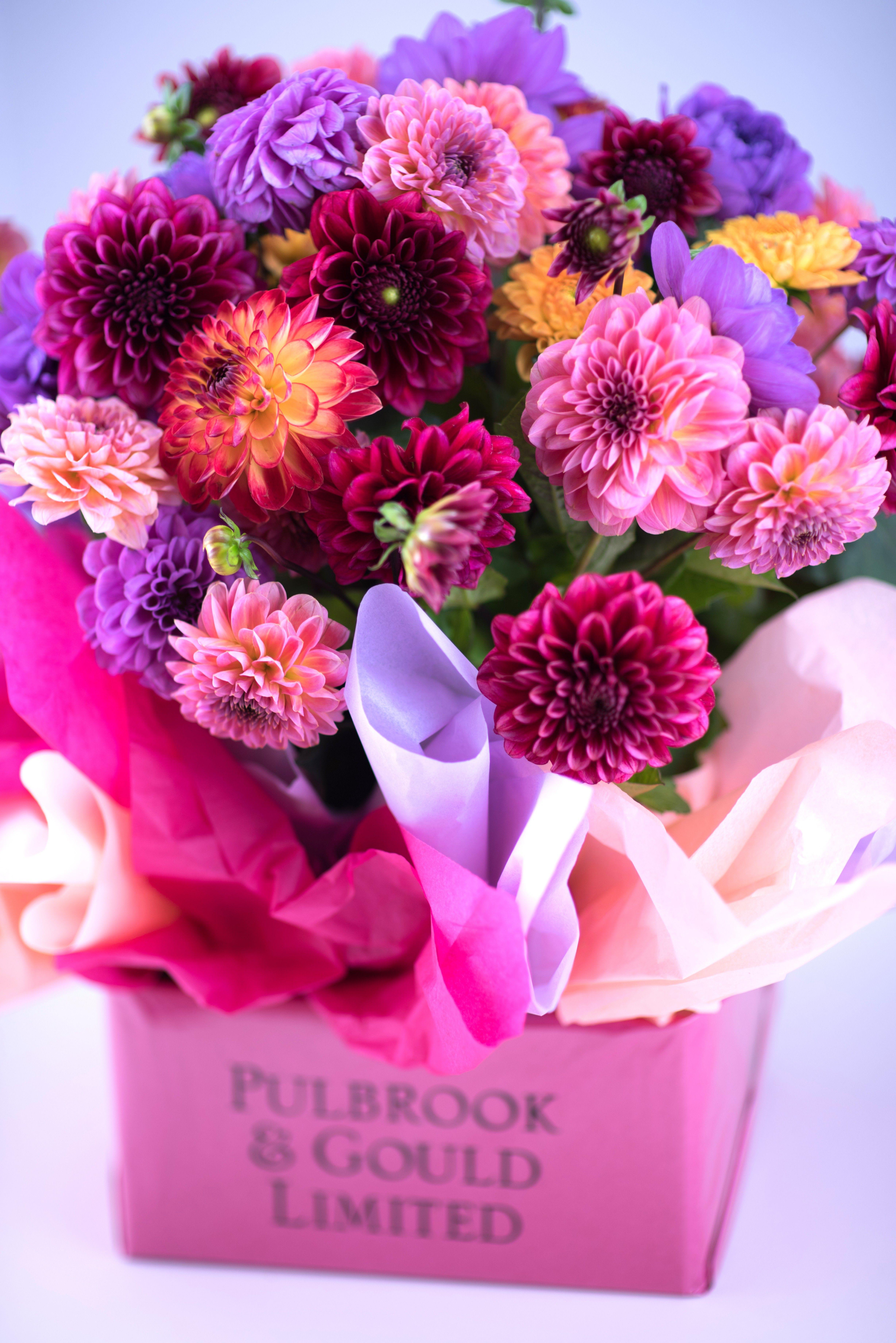 Mixed dahlias Pulbrook and Gould London florist