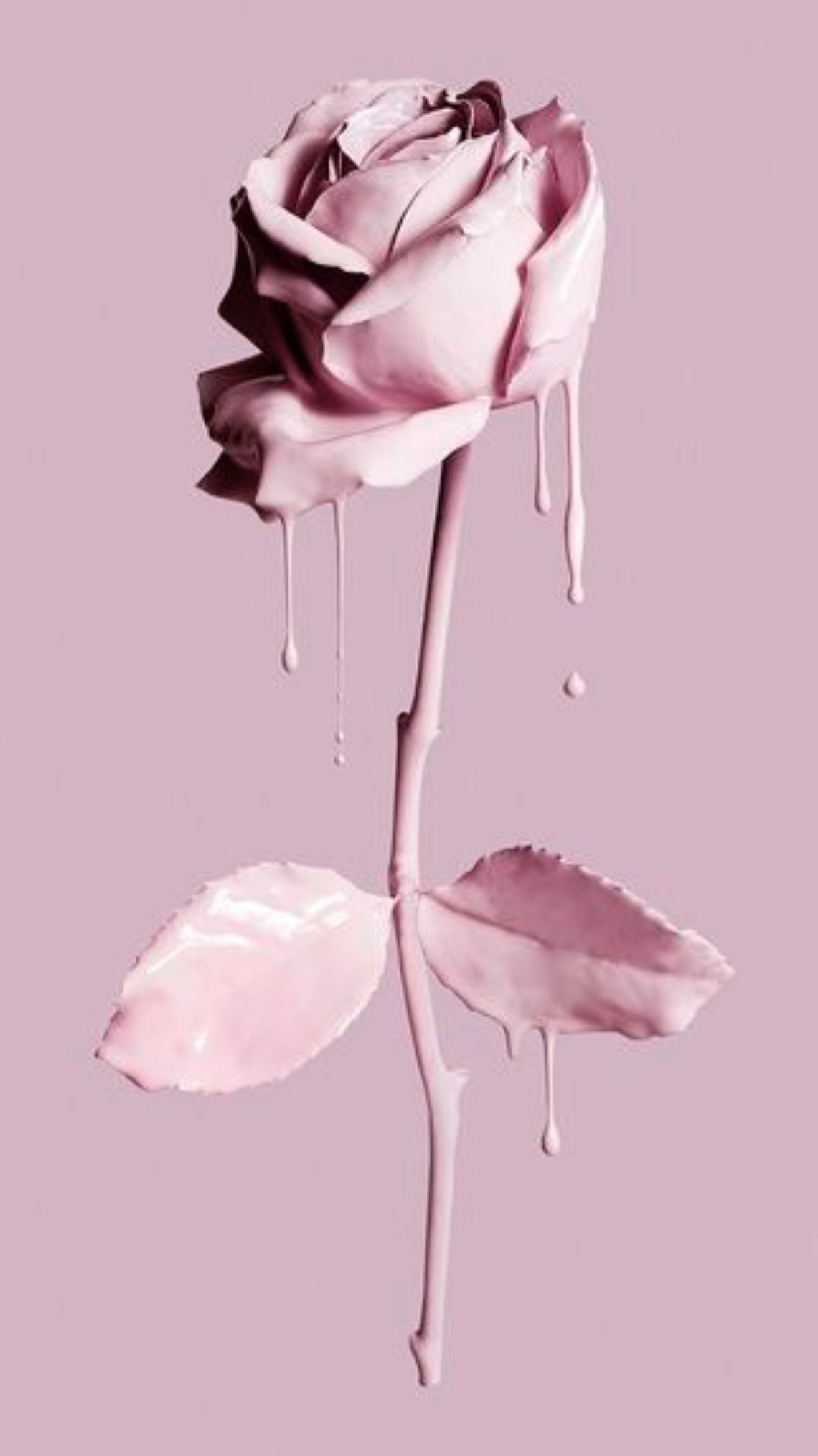 64 Roses Screensaver Wallpapers On Wallpaperplay Pastel Pink